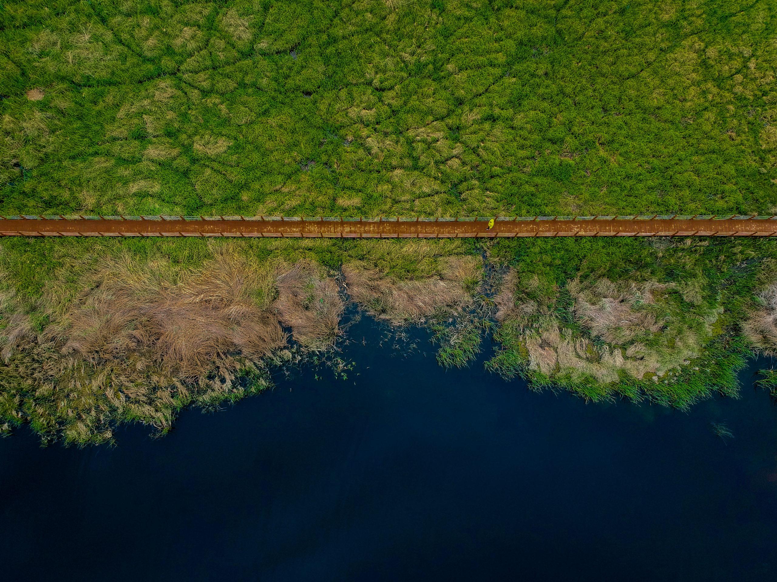 Serdal Deniz